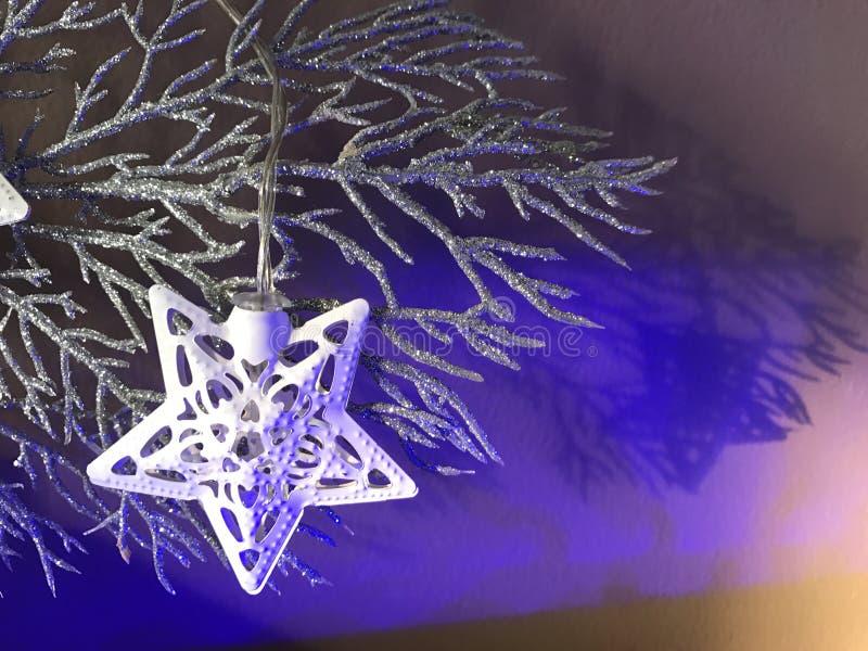 Φως αστεριών Χριστουγέννων σε έναν ασημένιο παγωμένο κλάδο στοκ εικόνες με δικαίωμα ελεύθερης χρήσης