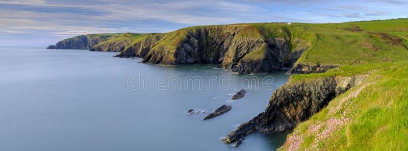 """Φως βραδιού άνοιξη Thrift """"pinks θάλασσας στον κόλπο Ceibwr, Pembroke, Ουαλία στοκ φωτογραφία"""