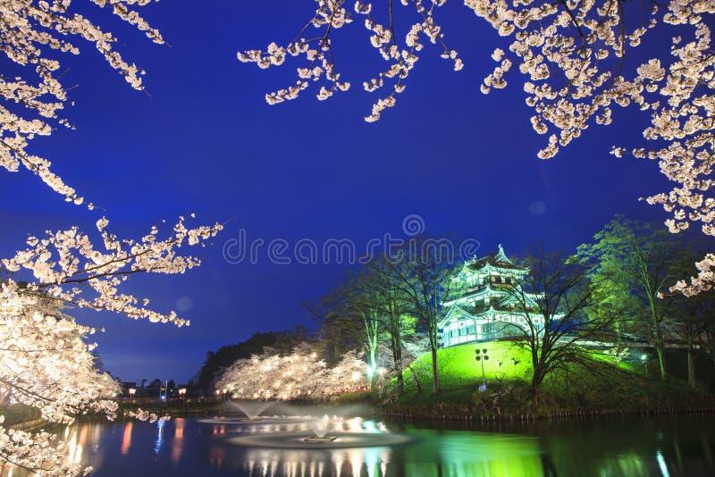 Φως επάνω Takada Castle και των ανθών κερασιών στοκ εικόνες