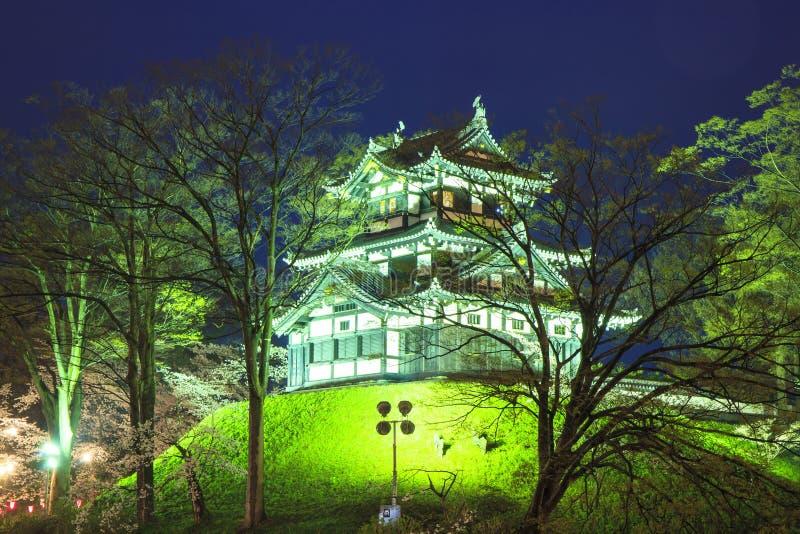 Φως επάνω Takada Castle και των ανθών κερασιών στοκ φωτογραφία με δικαίωμα ελεύθερης χρήσης