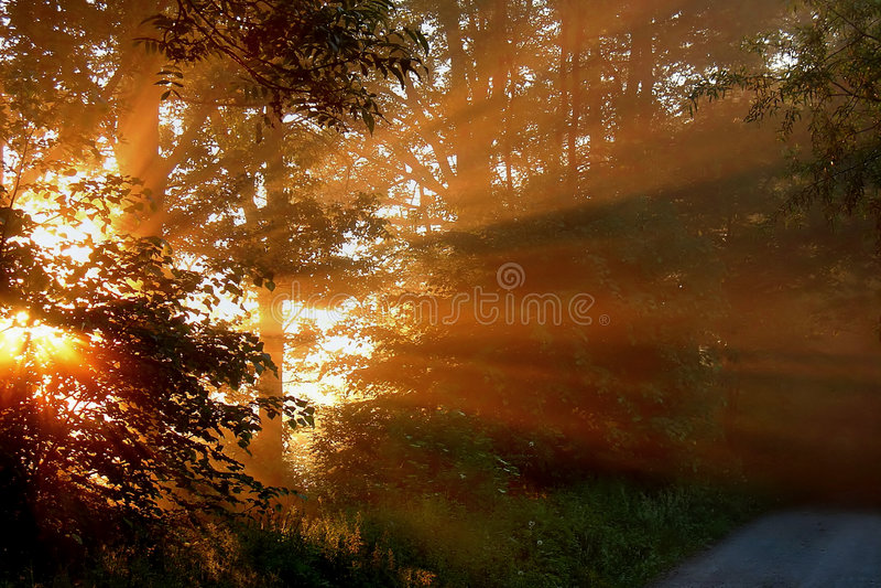 φως ομορφιάς στοκ εικόνα
