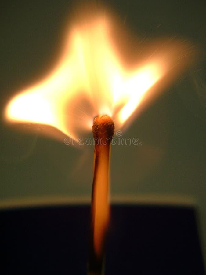 φως πυρκαγιάς μου στοκ εικόνες