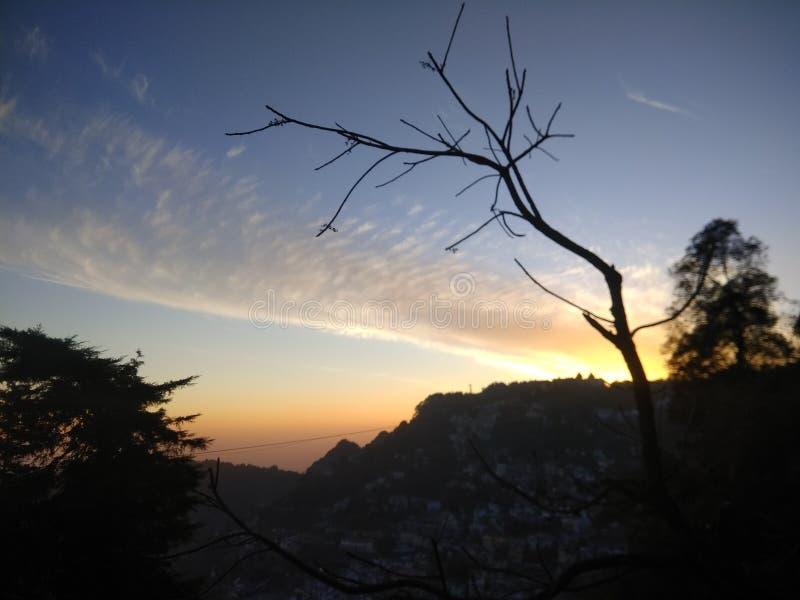 Φως του ήλιου και ο κλάδος στοκ φωτογραφίες με δικαίωμα ελεύθερης χρήσης