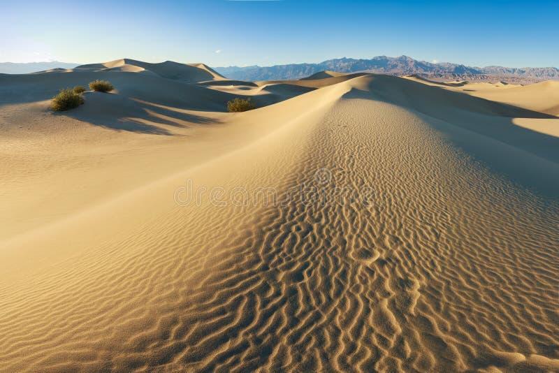 Φως του ήλιου ξημερωμάτων πέρα από τους αμμόλοφους άμμου και τα βουνά στους επίπεδους αμμόλοφους Mesquite, εθνικό πάρκο κοιλάδων  στοκ εικόνες