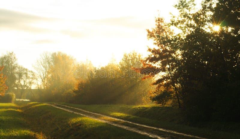 φως του ήλιου πρωινού στοκ εικόνα