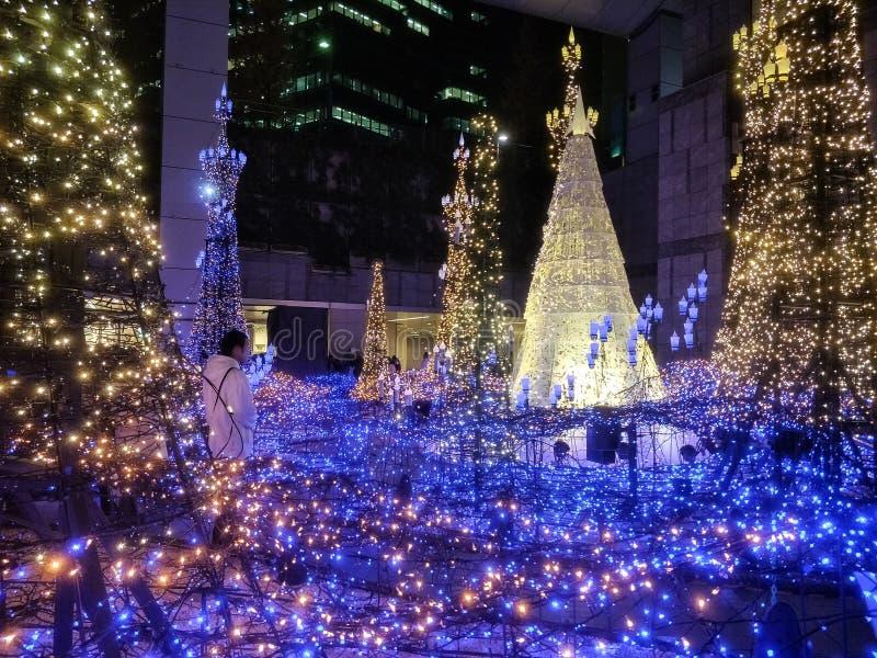 Φως φωτισμών του Τόκιο επάνω στοκ εικόνες με δικαίωμα ελεύθερης χρήσης