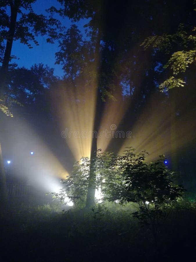 φως στοκ εικόνα
