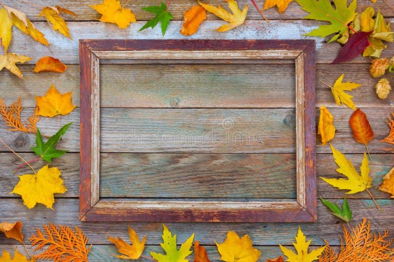 Φωτεινά φύλλα φθινοπώρου και πλαίσιο εικόνων σε ένα ξύλινο υπόβαθρο με το διάστημα αντιγράφων στοκ εικόνες