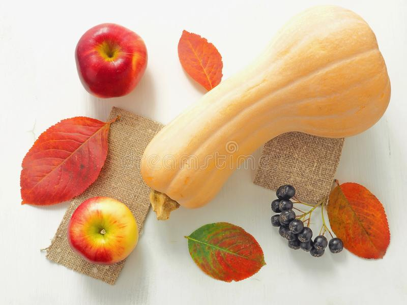 Φωτεινά φύλλα φθινοπώρου, κόκκινα μήλα και διαμορφωμένη μπουκάλι κολοκύθα επάνω στο άσπρο ξύλινο υπόβαθρο στοκ εικόνα με δικαίωμα ελεύθερης χρήσης