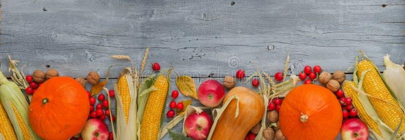 Φωτεινή διακόσμηση λαχανικών φθινοπώρου με την κολοκύθα, καλαμπόκι, μήλα στο ξύλινο υπόβαθρο Πανοραμικό ευρύ μέγεθος ως σύνορα ή  στοκ εικόνα με δικαίωμα ελεύθερης χρήσης