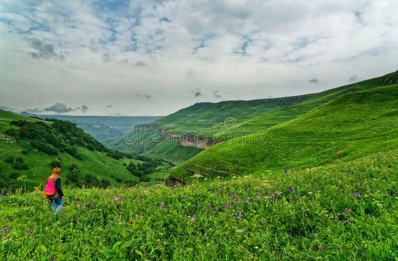 φωτεινό βουνό τοπίων Πανοραμική άποψη των χλοωδών ορεινών περιοχών μια ηλιόλουστη θερινή ημέρα καυκάσιος σαφούς ημέρας highmounta στοκ εικόνες με δικαίωμα ελεύθερης χρήσης