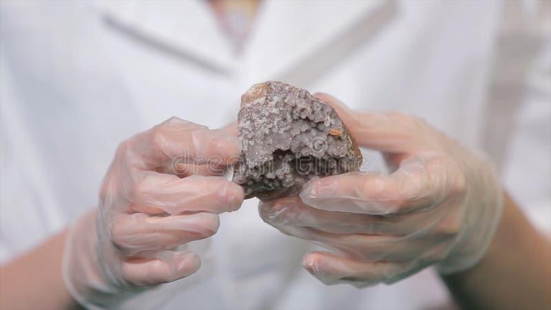 Φωτεινό γκρίζο ροδοκόκκινο μετάλλευμα κρυστάλλου στα χέρια με τα γάντια Η κρυστάλλωση είναι η φυσική ή τεχνητή διαδικασία από την στοκ εικόνα με δικαίωμα ελεύθερης χρήσης