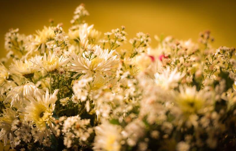 φωτεινό διάνυσμα εικόνων λουλουδιών ανθοδεσμών στοκ εικόνες