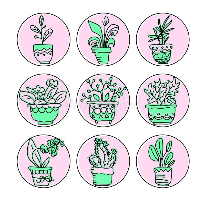 Φωτεινό διανυσματικό σύνολο εικονιδίων housplants στα δοχεία Πράσινα λουλούδια και δοχεία στο ρόδινο baground ελεύθερη απεικόνιση δικαιώματος