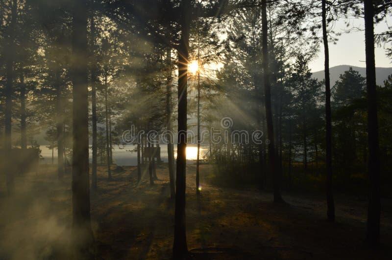 φωτεινό ηλιοβασίλεμα στοκ φωτογραφίες