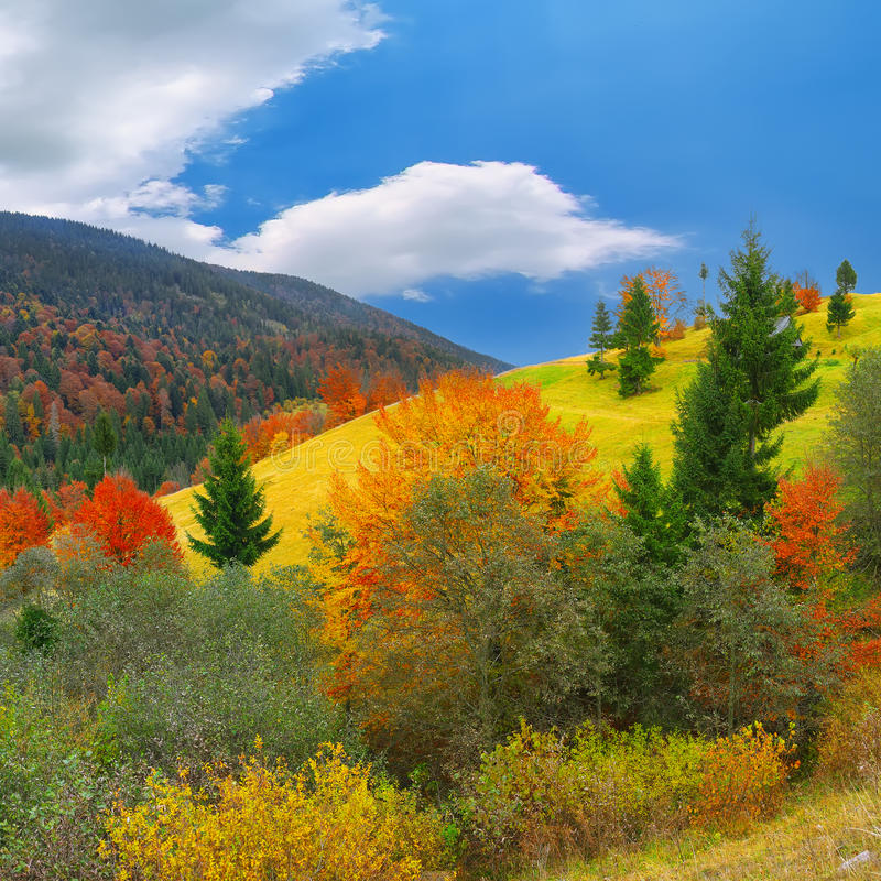Φωτεινό ηλιόλουστο φθινόπωρο στα βουνά στοκ εικόνα με δικαίωμα ελεύθερης χρήσης