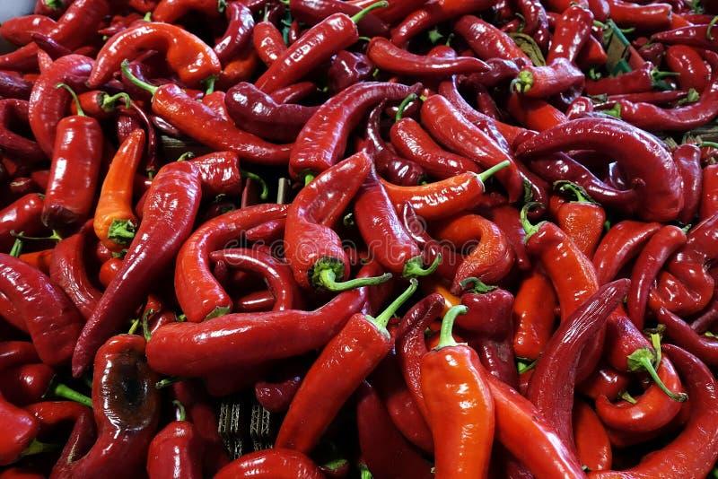 Φωτεινό λαμπρό κόκκινο τσίλι στην αγορά φρούτων στοκ εικόνες