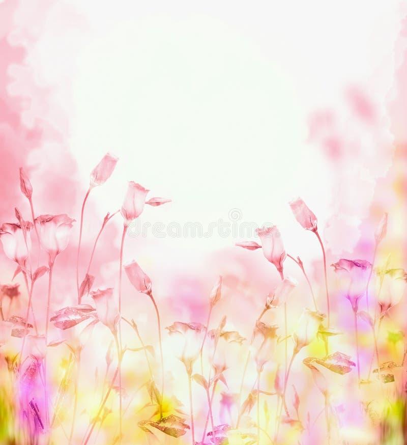 Φωτεινό ρόδινο υπόβαθρο με τα λουλούδια κουδουνιών στοκ εικόνα με δικαίωμα ελεύθερης χρήσης