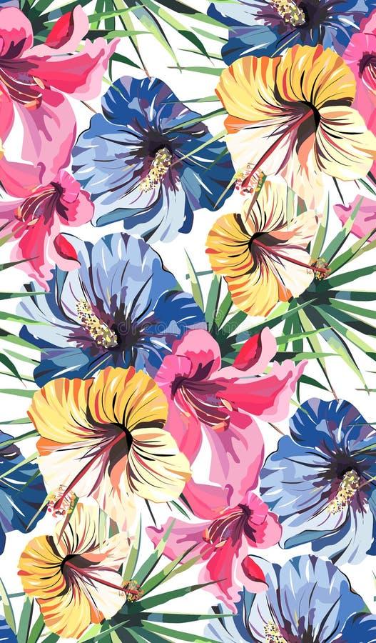 Φωτεινό όμορφο τρυφερό καλό τροπικό floral θερινό σχέδιο της Χαβάης ενός τροπικού ανοικτό ροζ κρίνου, κίτρινο και μπλε hibiscus κ διανυσματική απεικόνιση