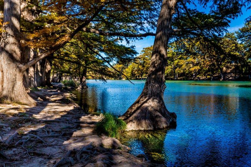 Φωτεινό όμορφο φύλλωμα πτώσης στο κρύσταλλο - σαφής ποταμός Frio στοκ εικόνα
