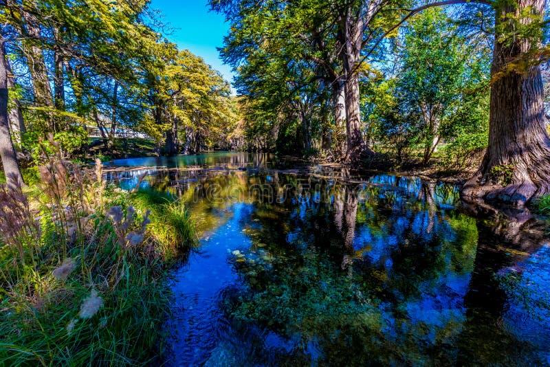 Φωτεινό όμορφο φύλλωμα πτώσης στο κρύσταλλο - σαφής ποταμός Frio στοκ φωτογραφίες