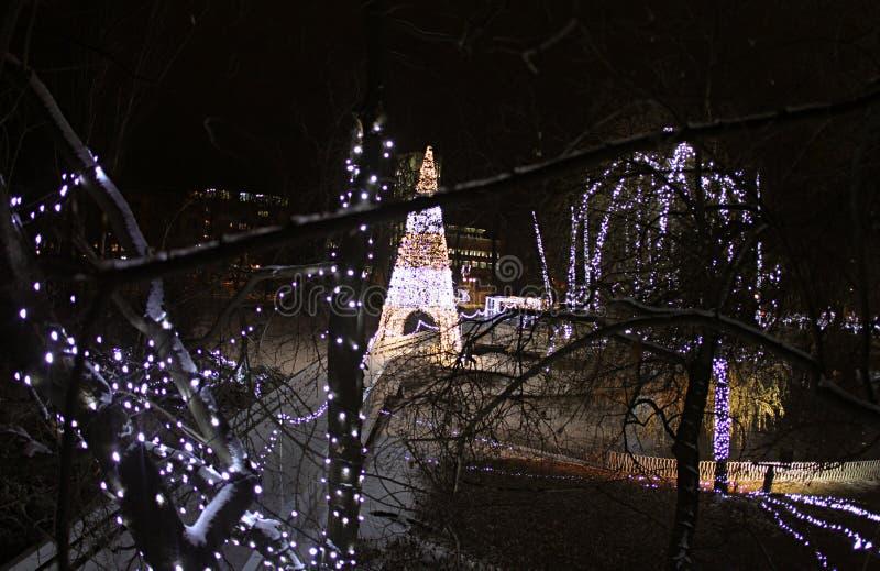 Φωτισμός του νέου έτους στο πάρκο Δούναβη, Νόβι Σαντ στοκ φωτογραφίες