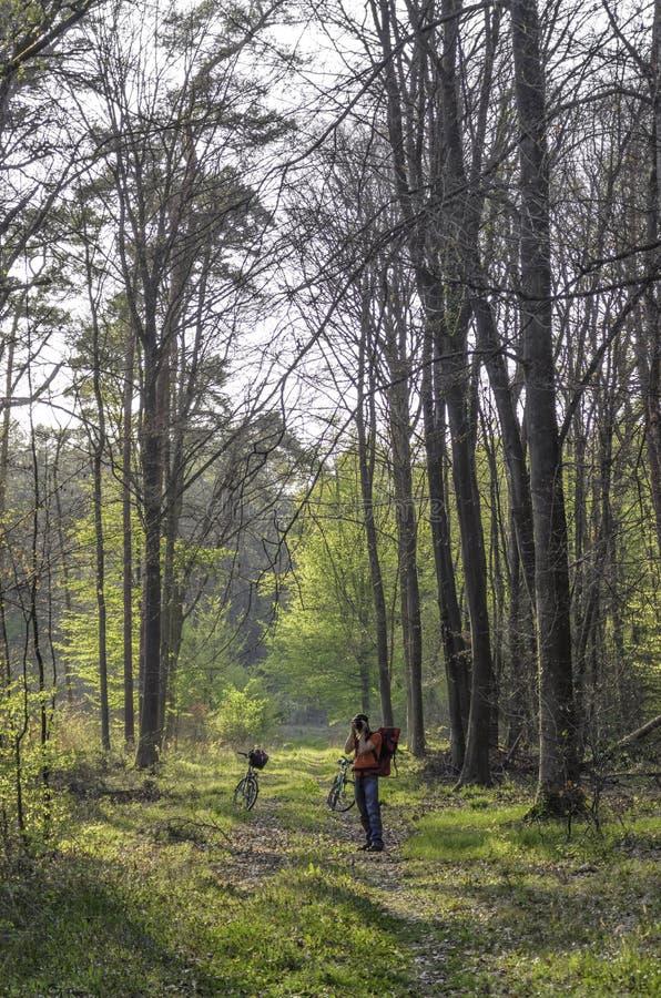 Φωτογράφος στο δάσος στοκ εικόνες με δικαίωμα ελεύθερης χρήσης