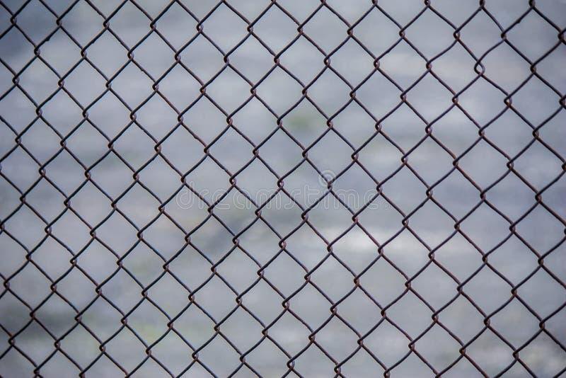 Φωτογραφία ενός δικτυωτού πλέγματος σιδήρου barracuda στοκ φωτογραφίες