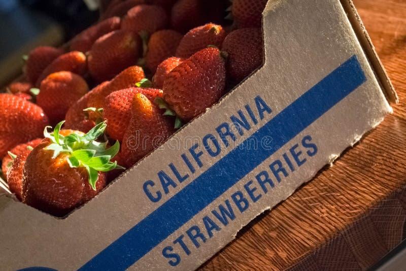 Φωτογραφία ενός κλουβιού των φραουλών Καλιφόρνιας στοκ εικόνα