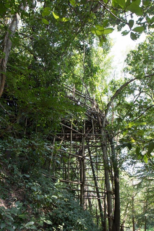 Φωτογραφία που λαμβάνεται κάτω από την άποψη στον καταρράκτη Noi Σάο Jed στη Sara στοκ εικόνες