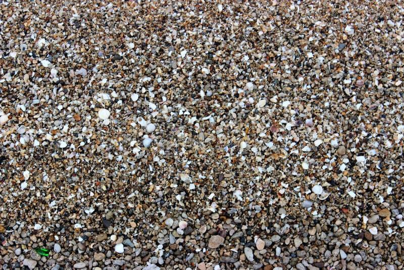 Φωτογραφία της άμμου θάλασσας που αναμιγνύεται με τα υπόλοιπα των θαλασσινών κοχυλιών στοκ εικόνα