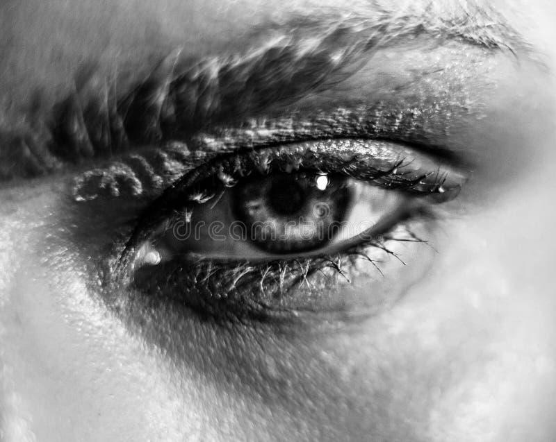 Φωτογραφία της όμορφης νέας γυναίκας με τα θαυμάσια eyelashes στοκ εικόνα με δικαίωμα ελεύθερης χρήσης