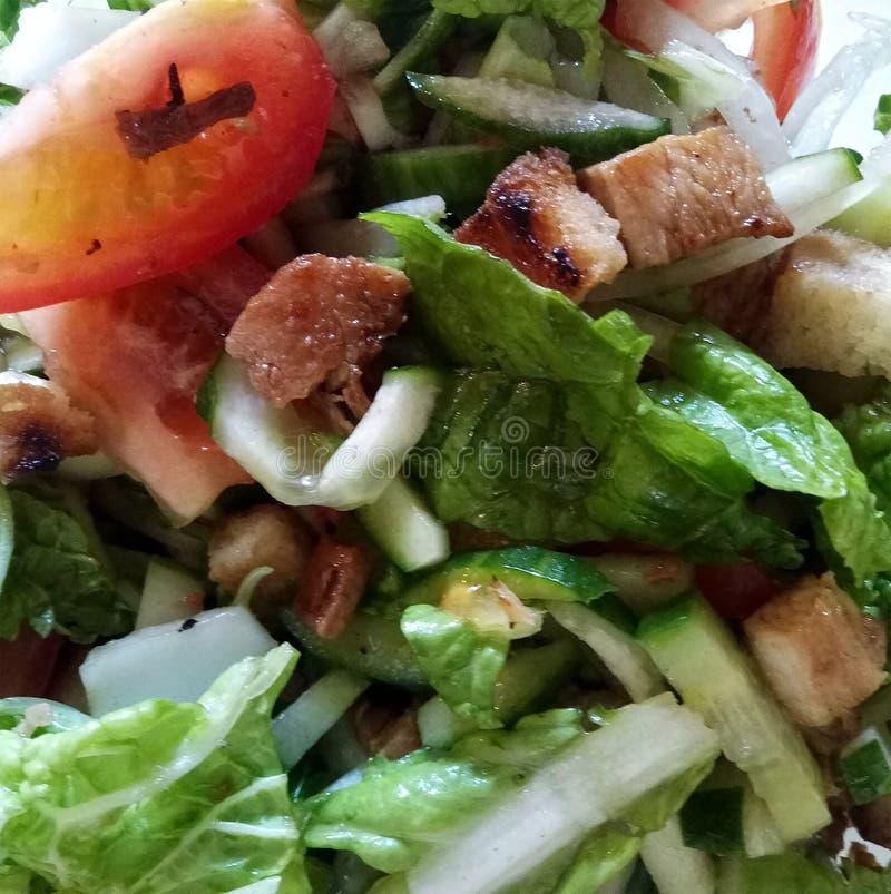 Φωτογραφία του ιταλικού πιάτου Panzanella Φρέσκα λαχανικά στοκ εικόνες