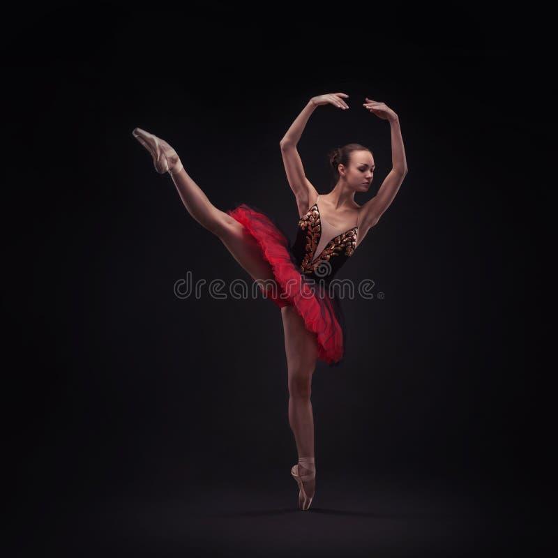 Νέος χορευτής balet στοκ εικόνες με δικαίωμα ελεύθερης χρήσης