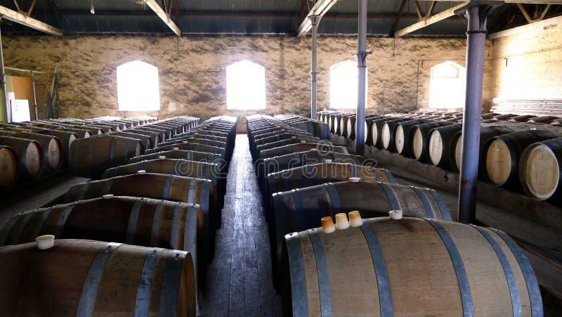 Φωτογραφία των εκλεκτής ποιότητας βαρελιών κρασιού στις σειρές στοκ εικόνα με δικαίωμα ελεύθερης χρήσης