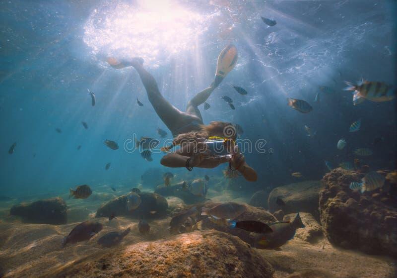 Φωτογραφία υποβρύχια στοκ εικόνες με δικαίωμα ελεύθερης χρήσης