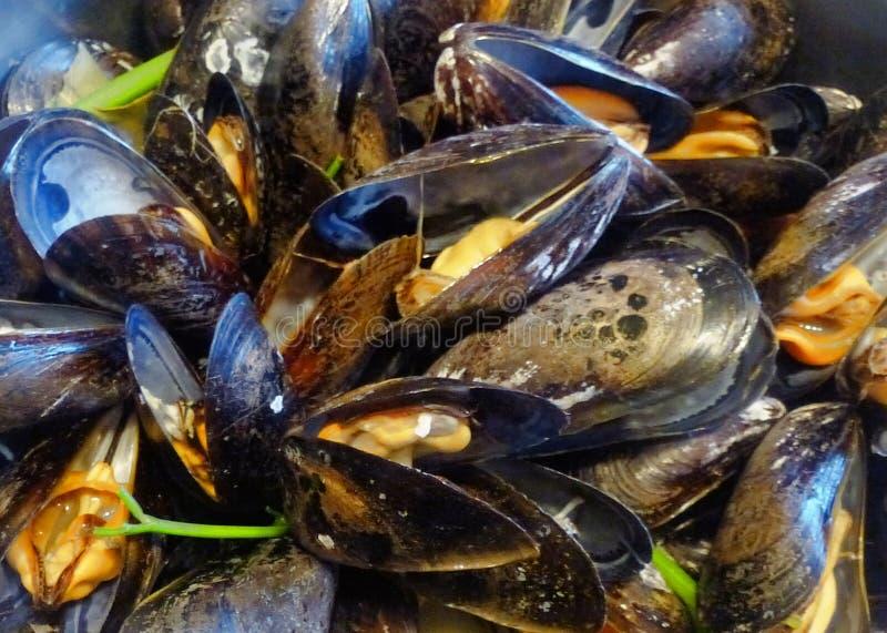 Φωτογραφίες των πιάτων ψαριών και θαλασσινών στοκ εικόνα