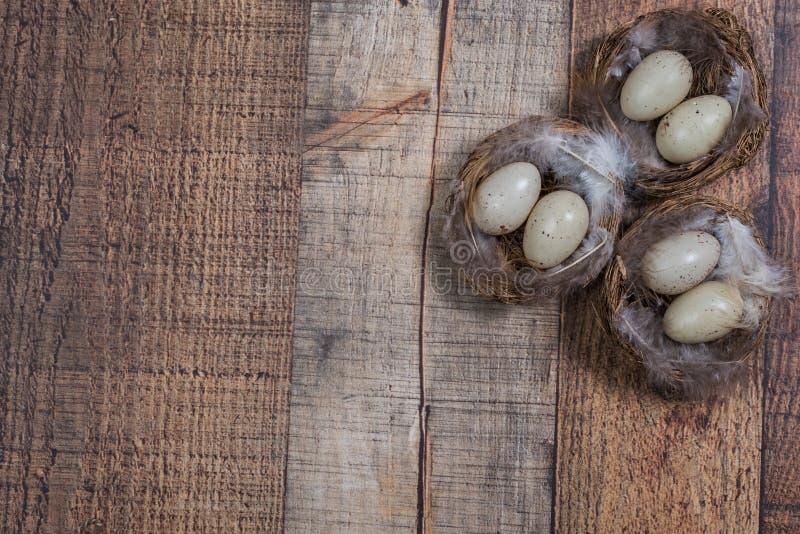 Φωλιές πουλιών σε μια γωνία ενός ξύλινου υποβάθρου στοκ εικόνα με δικαίωμα ελεύθερης χρήσης