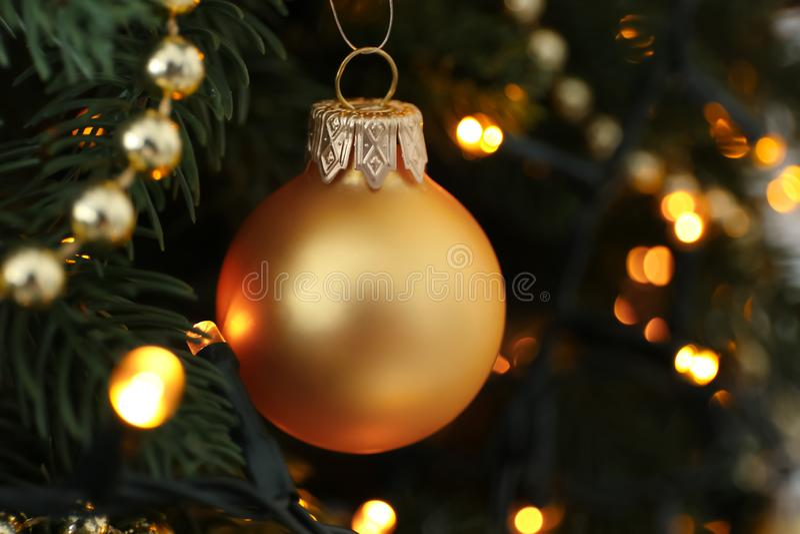Φω'τα σφαιρών και πυράκτωσης Χριστουγέννων στο δέντρο έλατου, κινηματογράφηση σε πρώτο πλάνο στοκ φωτογραφία με δικαίωμα ελεύθερης χρήσης