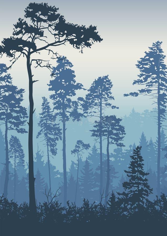 Φόντο δασικού τοπίου Δέντρα πεύκα την αυγή Φύση Τουρισμός και ταξίδια Κωνοφόρα δάση διανυσματική απεικόνιση