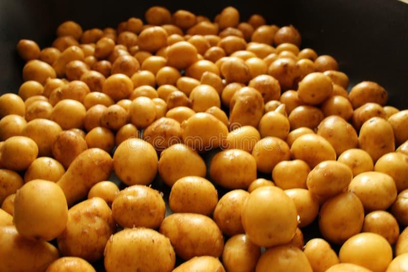 Φόντο με νόστιμες πατάτες παρασκευασμένες στοκ φωτογραφίες