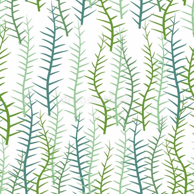 Φύκι σε ένα άσπρο υπόβαθρο Άνευ ραφής σχέδιο των θαλασσίων εγκαταστάσεων απεικόνιση αποθεμάτων