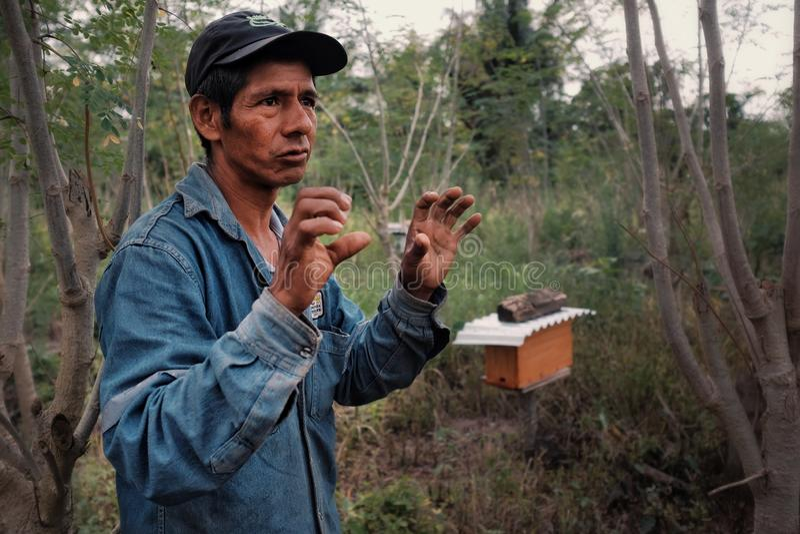 φύλακας μελισσών και υπερήφανος αγροτικός ιδιοκτήτης καφέ που εξηγούν πώς η κυψέλη του αντιδρά στην αλλαγή θερμοκρασίας στοκ εικόνες