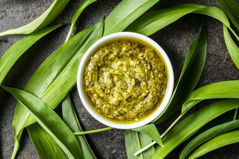 Φύλλα άγριου σκόρδου στοκ φωτογραφία με δικαίωμα ελεύθερης χρήσης