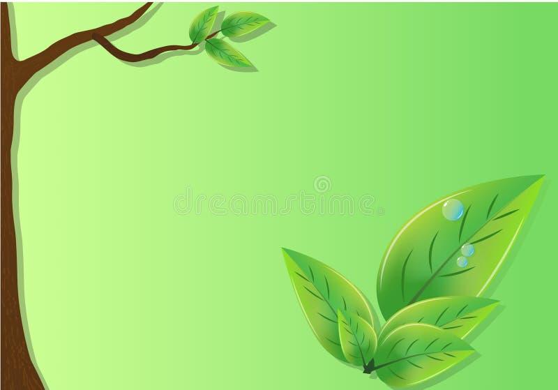 Φύλλα και δέντρα Eco με ένα πράσινο υπόβαθρο απεικόνιση αποθεμάτων