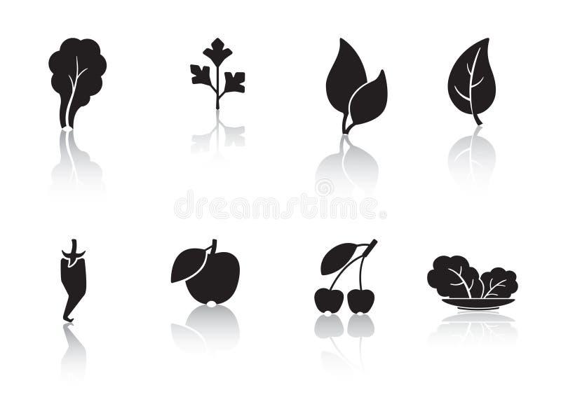 Φύλλα και καρπός διανυσματική απεικόνιση