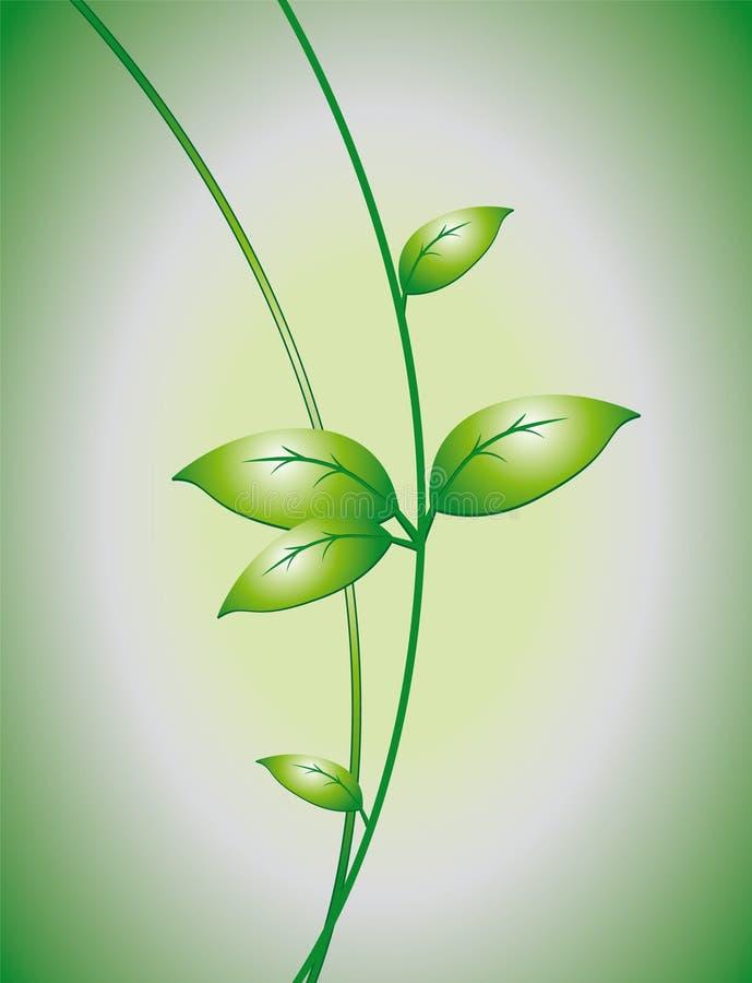 φύλλα κλάδων διανυσματική απεικόνιση