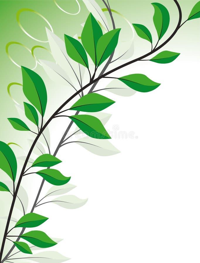 φύλλα κλάδων απεικόνιση αποθεμάτων