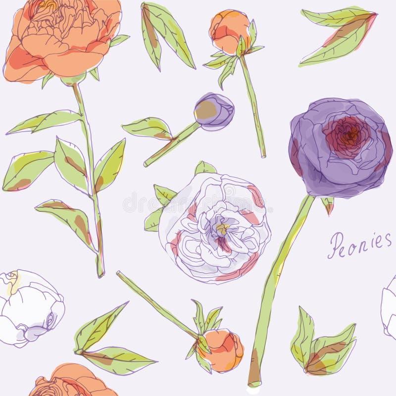 Φύλλα, μίσχοι και επανθίσεις της διανυσματικής απεικόνισης peonies Εικόνα με τα πορτοκαλιά, ιώδη και άσπρα λουλούδια τα μπαλόνια  απεικόνιση αποθεμάτων