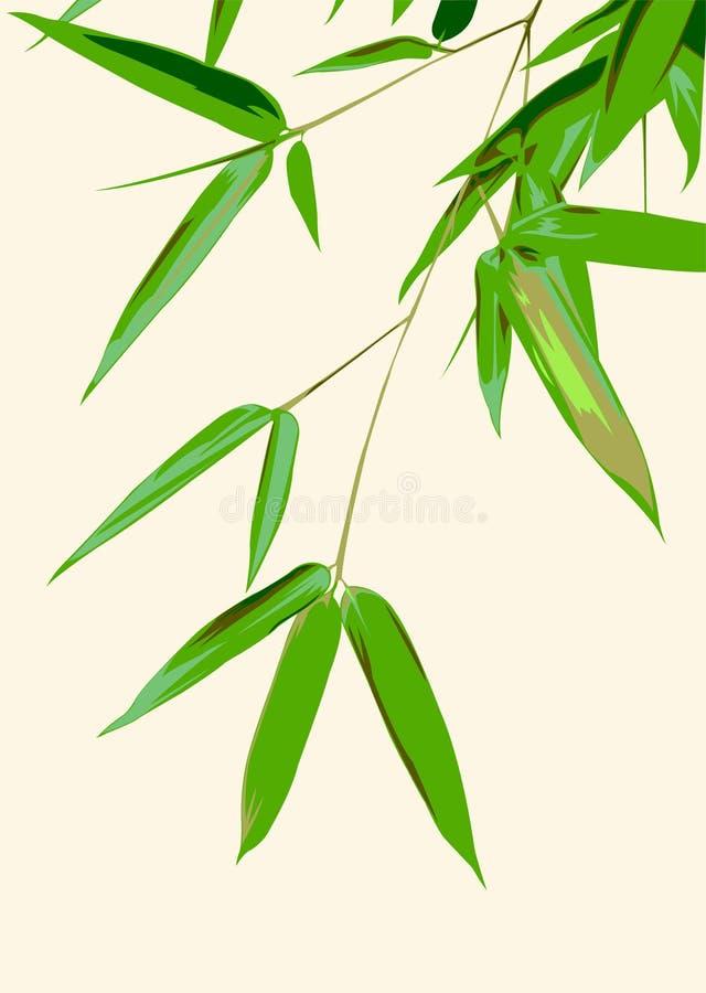 φύλλα μπαμπού διανυσματική απεικόνιση